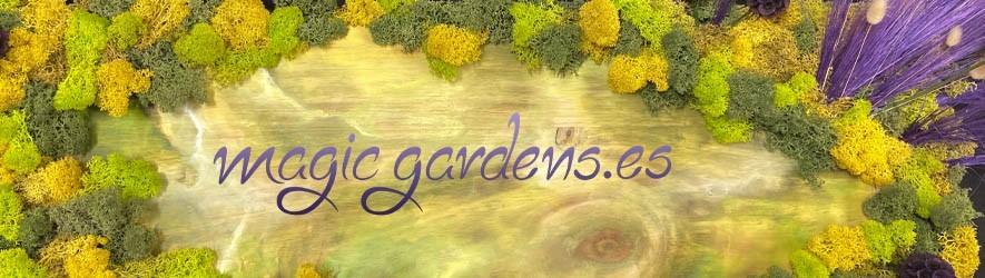 Los más originales regalos con plantas secas, preservadas y artificiales en magicgardens.es